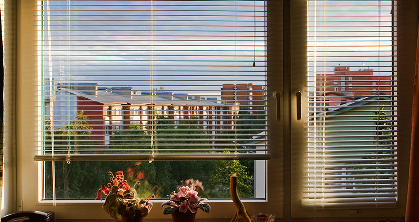 What are Window Shutters?